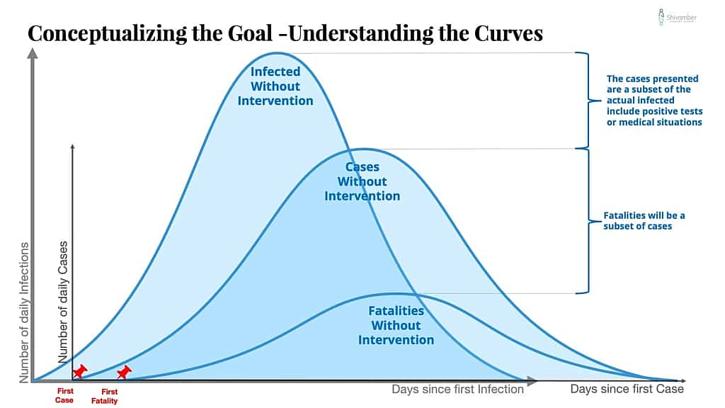Conceptualizing the Goal of COVID-19 Strategy - Understanding the Curves