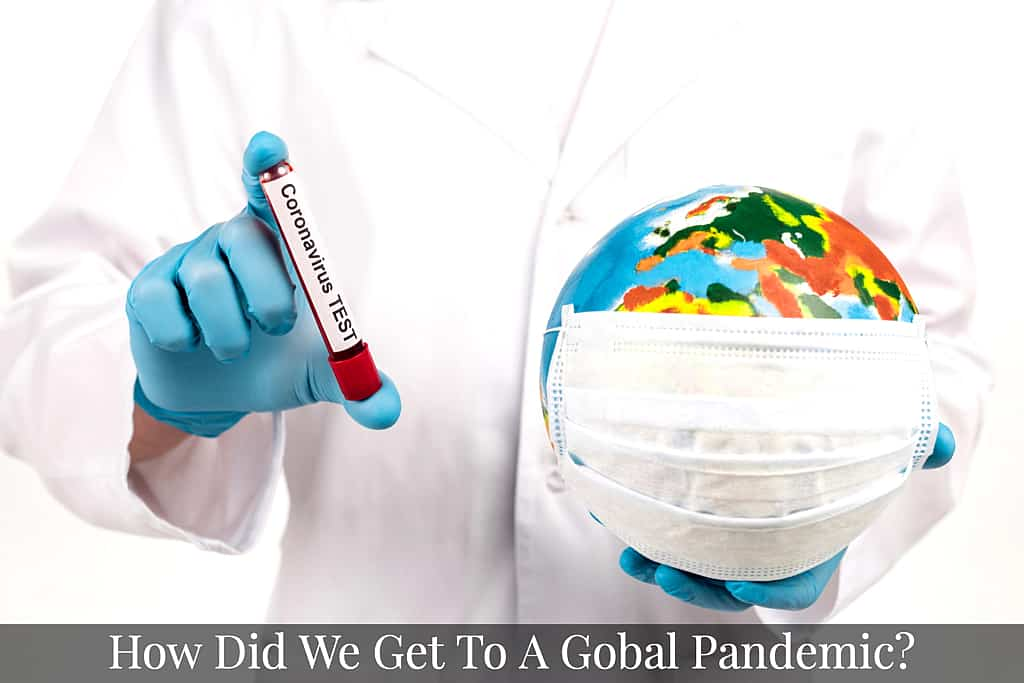 How did we get to a Global Pandemic?